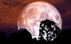 España podrá vivir el eclipse lunar prenumbral del 5 de julio